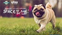 The CRA has Applied for the PetSafe DOG PARK Grant!